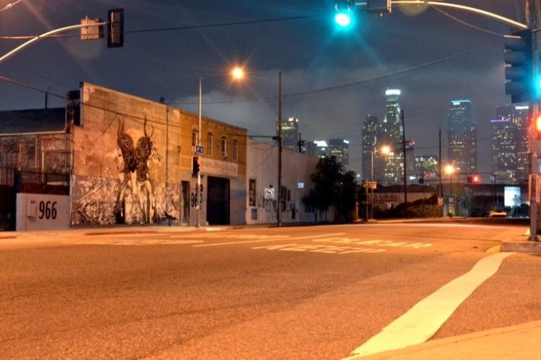DTOAR x Fin Dac | Downtown Los Angeles